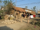 Traditional house in Chitwan