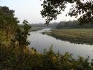 Small river in Chitwan