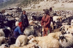 Upper Dolpo - Shelamukchung