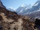 Way to Kyangjin Gompa